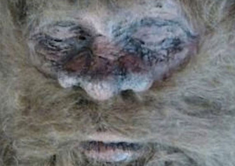 bigfoot pictures and videos